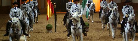 Jerez, ciudad del caballo