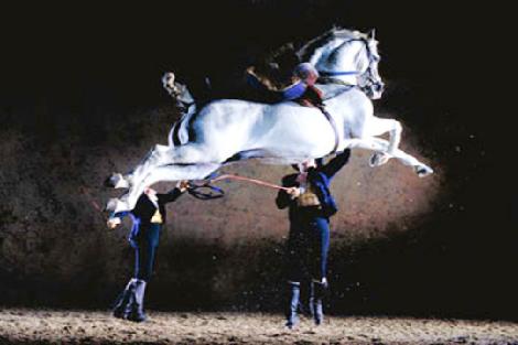 Como-bailan-caballos-andaluces