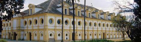 Visitar Jerez: Que puedes hacer y ver