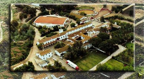 Ganaderia-Torrestrella