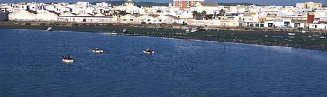 Barbate, sede de eventos deportivos en noviembre 2014: MTB, Senderismo o Surf