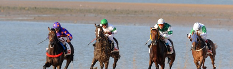 Las Carreras de caballos de Sanlucar 2014