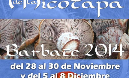V Carrusel Gastronómico de la Micotapa 2014 en Barbate: Fechas y Precio