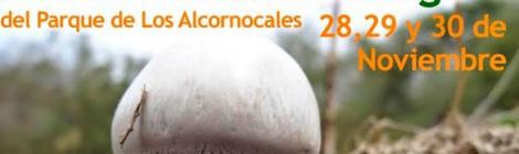 XVII Jornadas Micologicas del Parque Natural Los Alcornocales