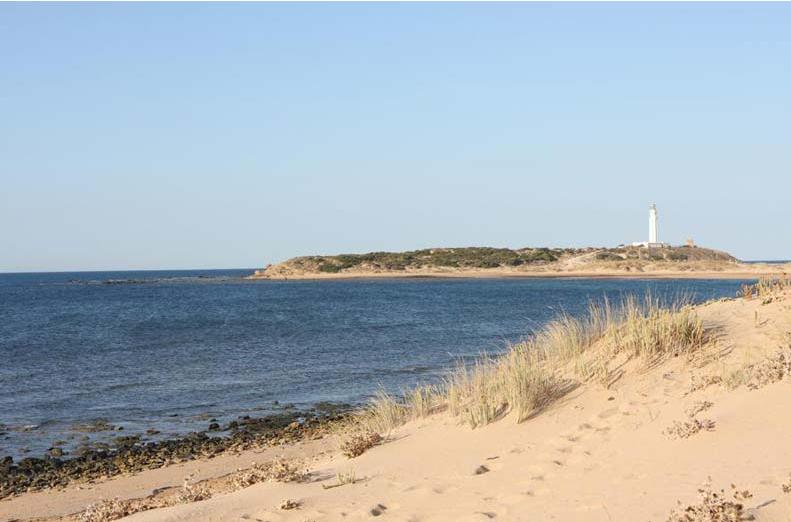 Faro_Cabo_Trafalgar