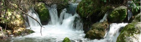 Ruta de senderismo por el río Majaceite entre Benamahoma y El Bosque