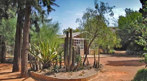 D a internacional de los bosques 2015 cadiz diferente for Guarderia el jardin san fernando