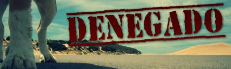 Playa Punta Candor para Perros en Rota: Cerrada por la Junta de Andalucía