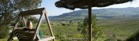 Casa Montecote, paraíso verde en La Muela