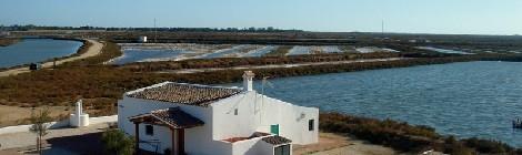 Tres rutas naturales de senderismo por Chiclana de la Frontera 2015 II