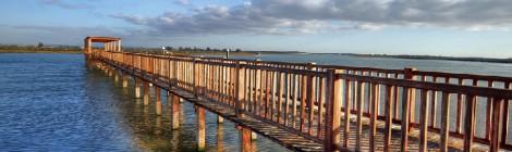 8 rutas en bici para conocer El Puerto