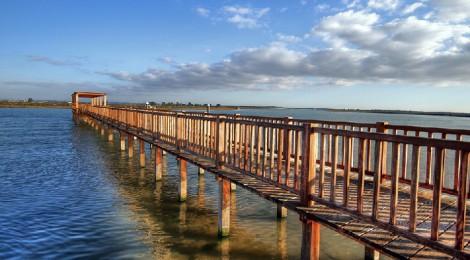 12 Planes de ocio en Cádiz 27-29 Noviembre