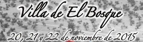 VI Recreación Histórica Villa de El Bosque