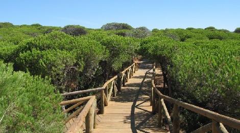 Ruta de senderismo junto al mar en Rota
