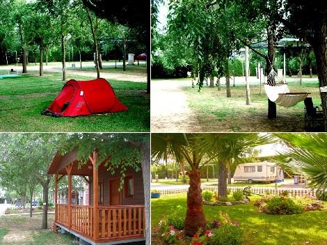 Camping_El_Palmar
