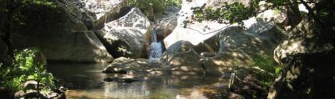 Ruta Arroyo del río Guadalmesí Tarifa