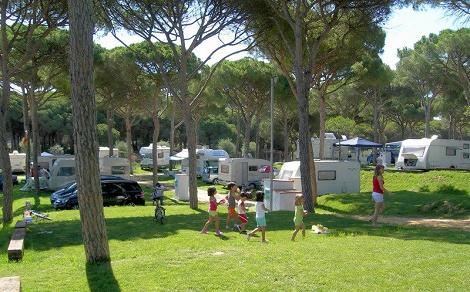 camping_pinar_san_jose_zona_acampada