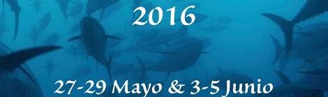 III Feria del Atún Puerto de Sotogrande San Roque 2016