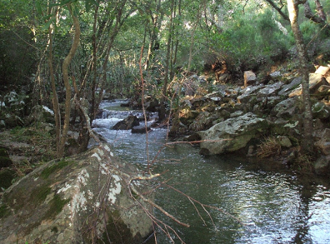 Río_Ruta_Garganta_Valdeinfierno