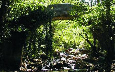 Ruta_Senda_Los_Prisioneros_Parque_Natural_Los_Alcornocales