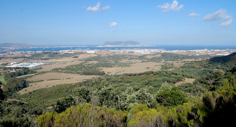 ruta_senderismo_monte_torre_bahia_algeciras