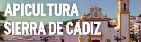 II Feria de la Miel y la Tapa Prado del Rey