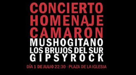 Concierto Homenaje a Camarón San Fernando 2017