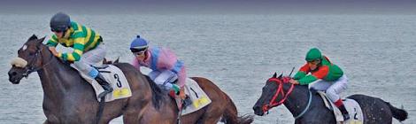 VI Gran Premio Atlanterra Polo & Derby