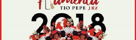 XI Pasarela Flamenca Jerez 2018